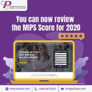 MIPS 2021 reporting, MIPS Qualified Registries, MIPS Reporting 2021, MIPS 2020 feedback, Medicare and Medicaid Services, MIPS payment adjustments, MIPS score, MIPS consultants